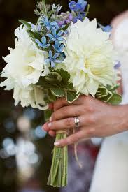 Tweedia in a Wedding Bouquet