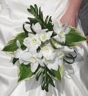 Amazon Lily Briday Bouquet