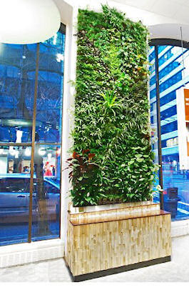 Living Wall At ING Vancouver