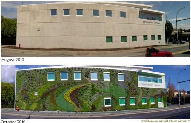 Semiahmoo Library - Before and After the Living Wall