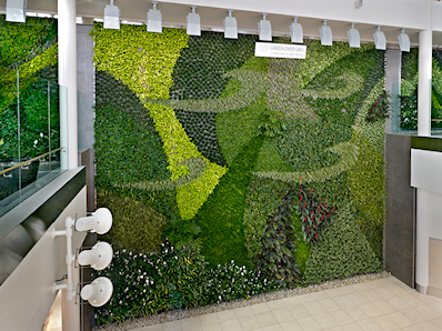 Large Living Wall in Commercial Area