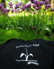 Tulip Time Festival Stemfest 2012