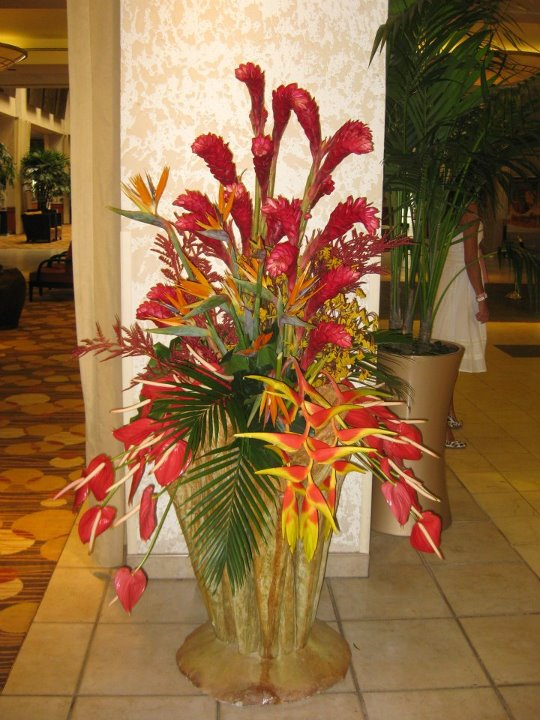 Aifd caliente symposium 2012 miami july 12 16 grower for Foyer flower arrangement