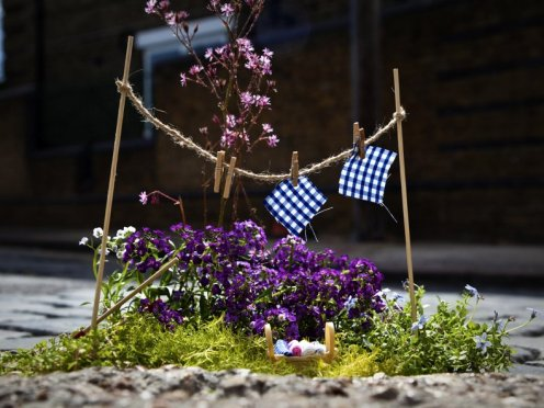 Clothesline, Pothole Garden by the Pothole Gardener