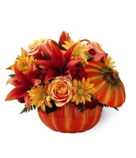 Autumn Brightness Arrangement from Grower Direct