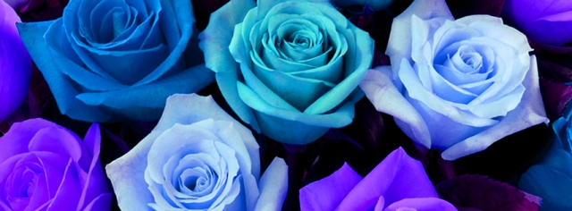 Facebook Cover for Flower Lovers!