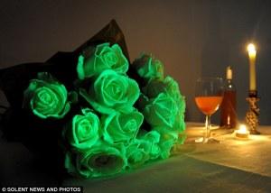 interflora glow in the dark roses