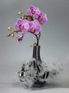 Martin-Klimas exploding vase