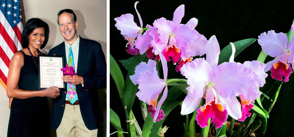 michelle obama orchid