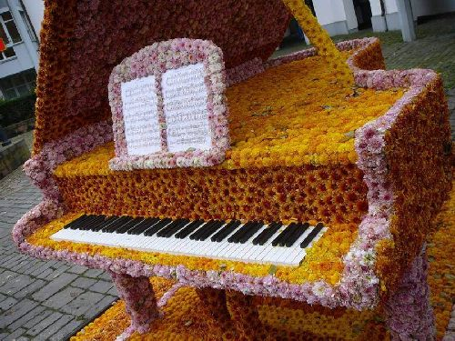 Chrysanthemum Festival in Lahr, Germany