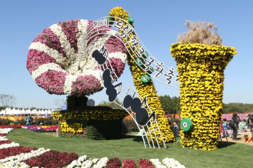 dream park chrysanthemum festival, korea