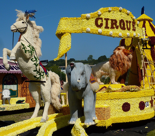 flowered covered float at Jersey Battle of  Flowers 2012