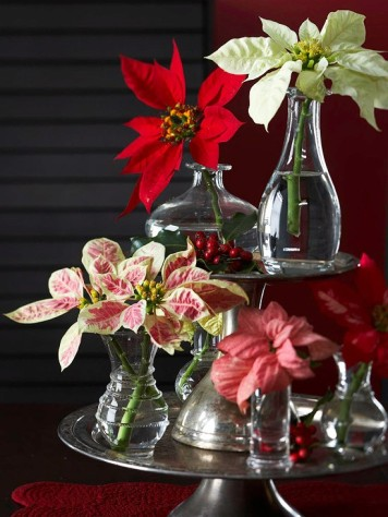 christmas centerpiece with poinsettias