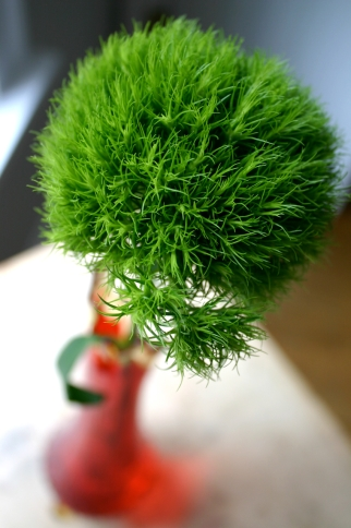 green dianthus