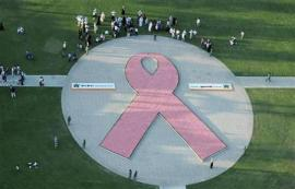 Largest Breast Cancer Awarenss ribbon made of flowers