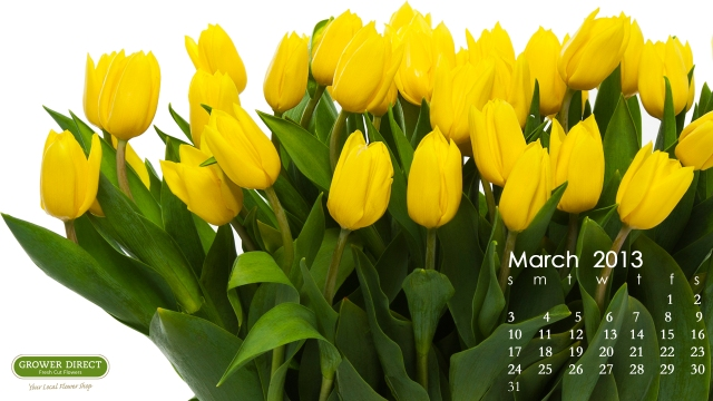 March 2013 Desktop wallpaper calendar -yellow tulips