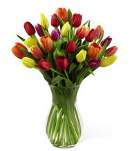 Spring floral arrangement from Grower Direct Fresh Cut flowers
