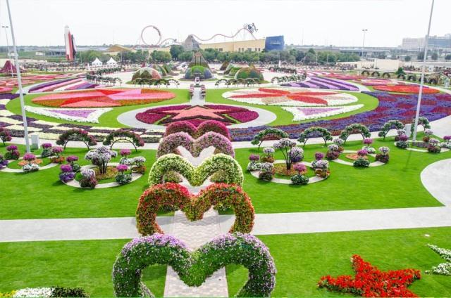 Miracle Garden in Dubai 2013
