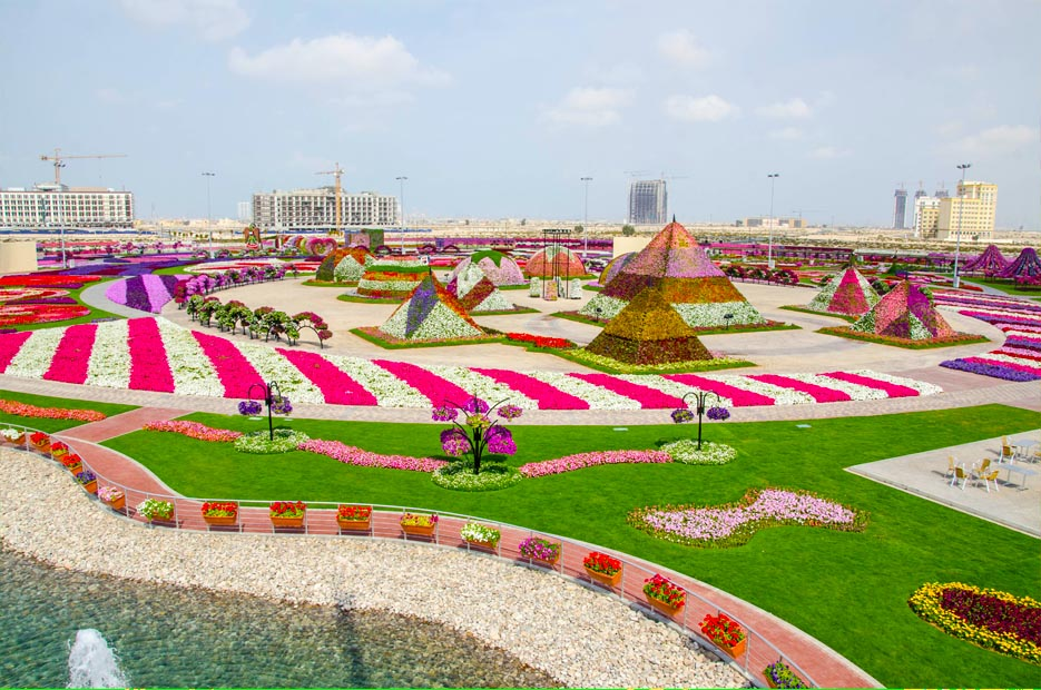 Cool places to see flowers dubai miracle garden grower for Dubai places to stay