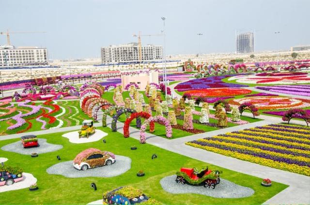 Dubai Miracle Garden 2013