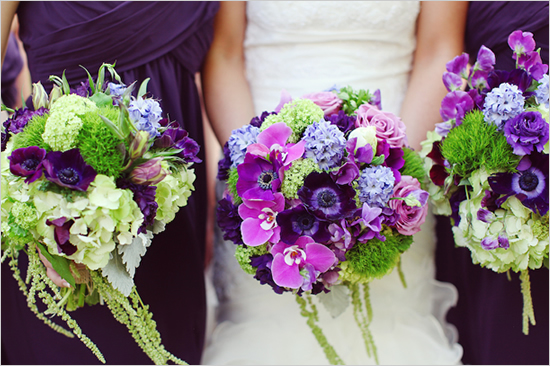 Hot Colour Trends For 2013 Purple And Green Grower Direct Fresh Cut Flowe