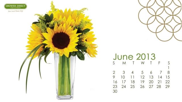 June 2013 desktop wallpaper