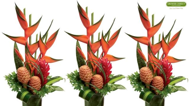 Tropical Arrangement desktop wallpaper