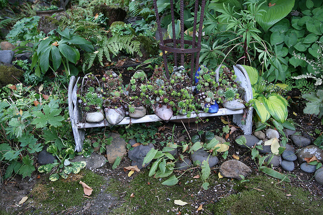 Container gardening with high heel shoes
