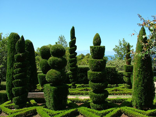 topiary examples