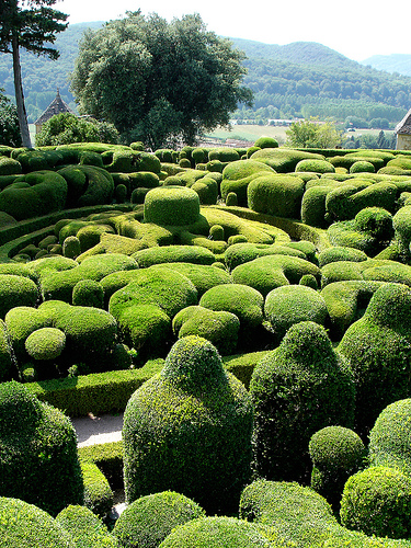 example of topiary