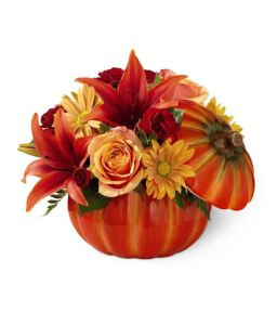 pumpkin floral arrangement from GrowerDirect.com