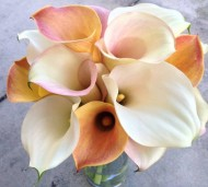 Wedding Bouquet with calla lilies