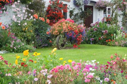english rose cottage