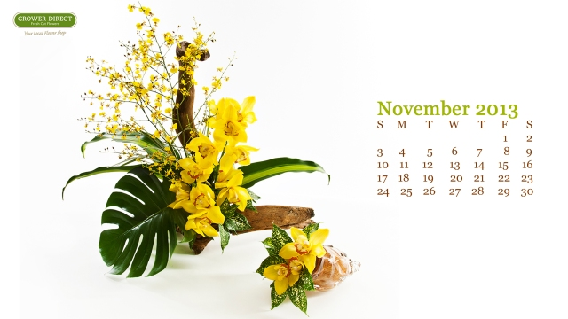 Free November 2013 desktop wallpaper