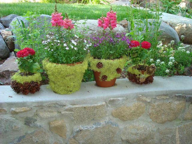 Image Credit: www.bystephanielynn.com