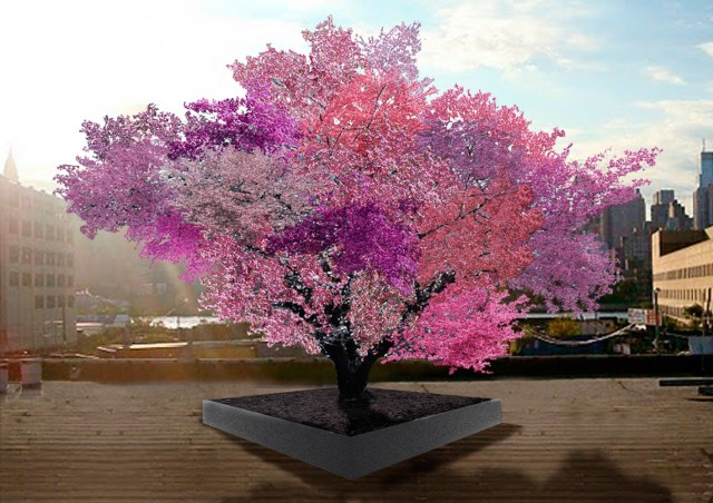 The Tree of 40 Fruit is an ongoing series of hybridized fruit trees by contemporary artist Sam Van Aken.